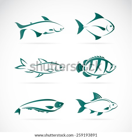 Vector group of fish on white background - stock vector
