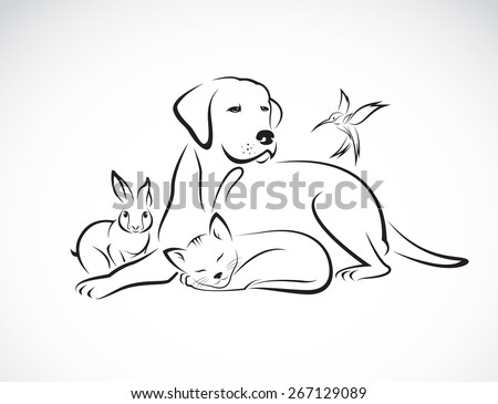 Vector group of pets - Dog, cat, bird, rabbit, isolated on white background - stock vector