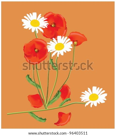 Vector hand drawing with bouquet of wildflowers. EPS 10. - stock vector