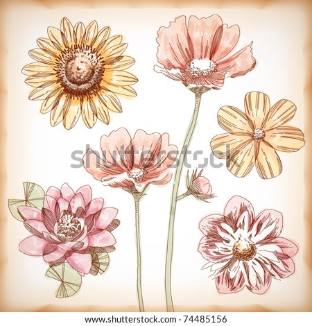 Vector Hand Drawn Assorted Flowers - stock vector