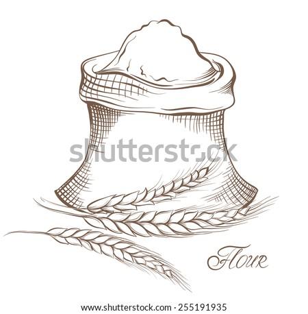 Vector hand drawn flour and wheat grain.  - stock vector