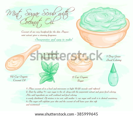 vector hand drawn illustration of mint sugar salt scrub with coconut oil recipe. - stock vector