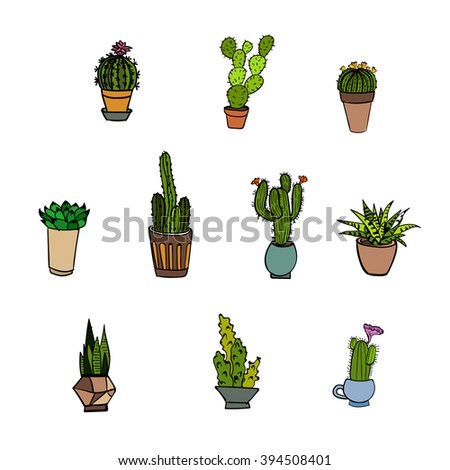 vector hand-drawn set of cute various cacti and succulents.Could be used as decorative elements, icons, invitations, textile prints. - stock vector
