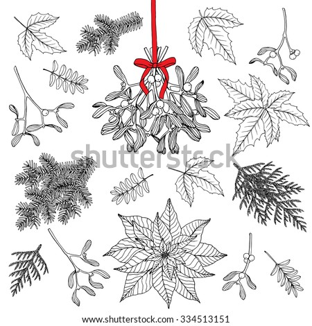 Vector hand drawn set with  Christmas decoration plants. Pine branches, Holly, Poinsettia,  Mistletoe. Isolated on white background.  - stock vector
