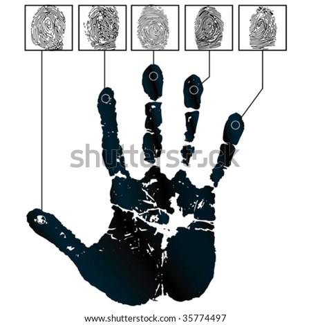 Vector hand-prints and five fingerprints - stock vector