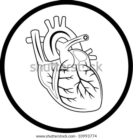 Vector heart icon. Black and white. Simply change. In my portfolio there is version 4 in 1. - stock vector