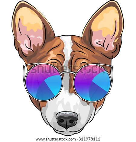 Vector hipster smiling dog Basenji  breed in trendy multicolored mirror sunglasses - stock vector