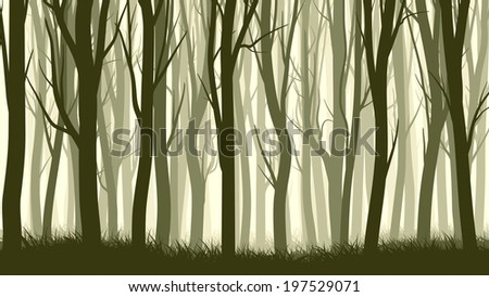 Vector horizontal illustration of misty forest with trees. - stock vector