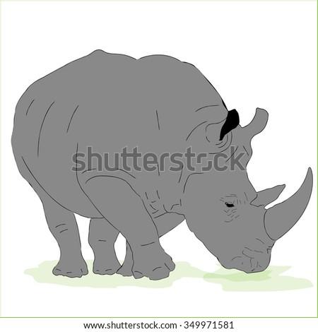 Vector Huge male rhino - stock vector
