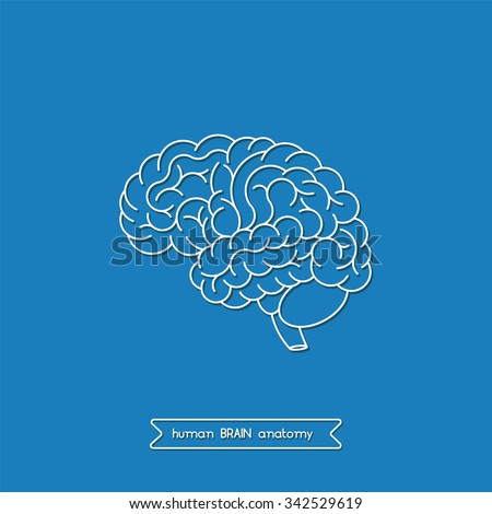 an analysis of leinigens views on the human brain The creation of god a human brain dissimulated in the figure of god view author profile more posts how to fall asleep.