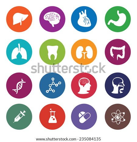 Vector human organs icon set - stock vector