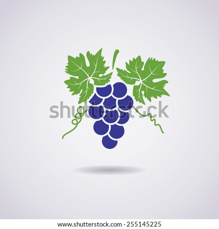 vector icon of grapes - stock vector