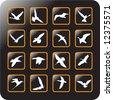 Vector Icon Set for birds -9 - stock vector