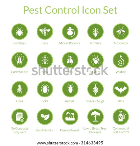 Vector icon set with insects like flies, cockroaches, bed bugs, spiders and termites for pest control companies - stock vector
