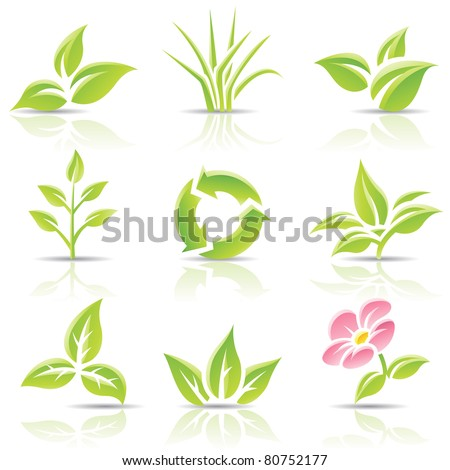 Vector icons of leaves and a flower - stock vector