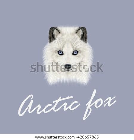 Vector Illustrated Portrait of Arctic fox. Cute white fluffy face of Polar Fox on dark blue background. - stock vector