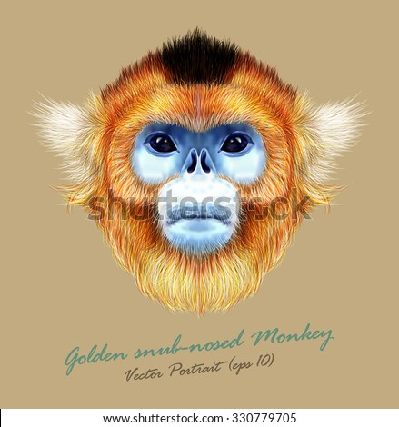 Vector Illustrated Portrait of Golden snub-nosed monkey on natural color background. The wild cute mokey of Southwest China. - stock vector