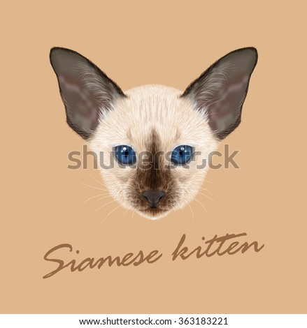Vector Illustrated Portrait of Kitten. Siamese Kitten. Chocolate point with blue eyes on tan background. - stock vector