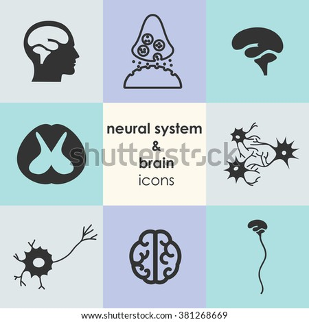 vector illustration / brain and neural system icons - stock vector