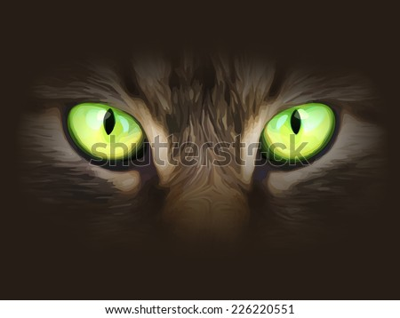 Vector illustration. Cat eyes look at you out of the darkness. - stock vector