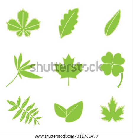 Vector illustration collection of green leaves icons. Autumn leaves