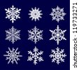 Vector illustration, collection white snowflake on a blue  background - stock photo