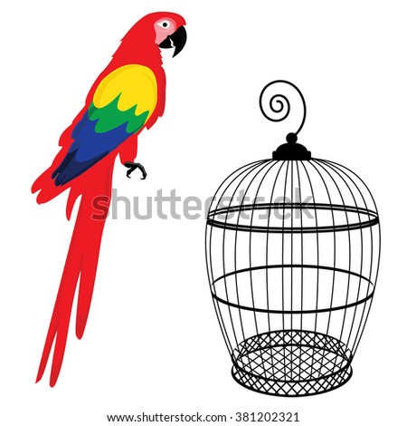 Vector illustration colorful macaw parrot and birdcage. Beautiful macaw. Cartoon red parrot - stock vector