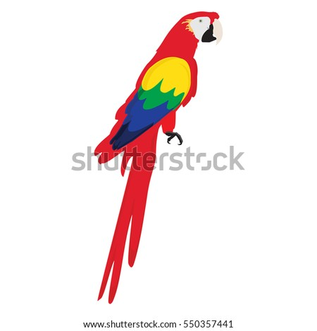 Vector illustration colorful macaw parrot. Beautiful macaw. Cartoon red parrot. Wild tropical bird