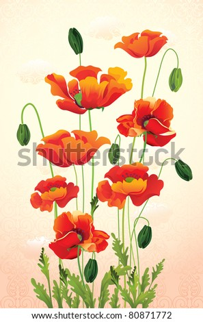 vector illustration contains the image of Poppy floral background - stock vector