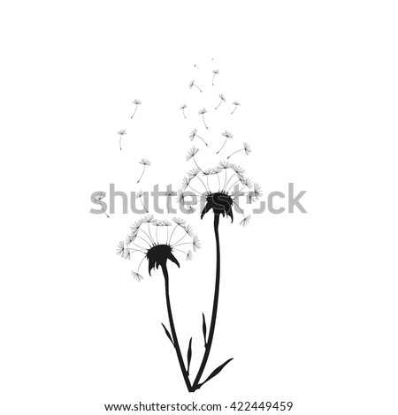 Vector illustration Dandelion time.