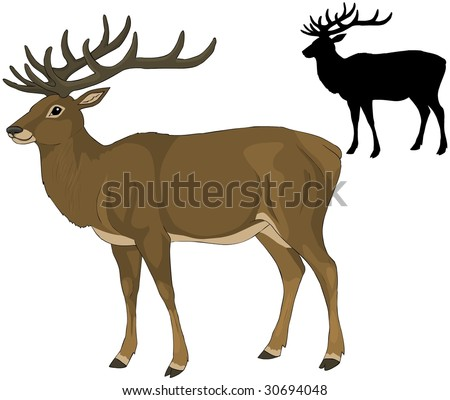 Vector illustration Deer silhouette isolated vector - stock vector