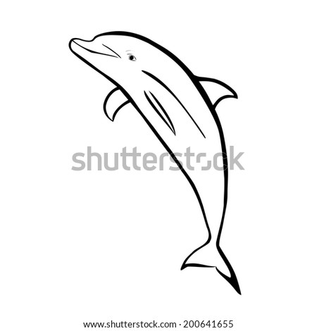 Vector illustration : Dolphin- sketch on a white background. - stock vector