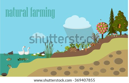 vector illustration, flat, natural farming smarter,  info-graphics - stock vector