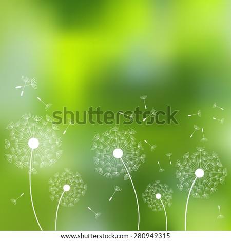 Vector illustration for design. Ecology label. Eco design. Life green. Dandelion seeds. Blurred background. Summer blurred background. Template for poster. EPS 8. - stock vector