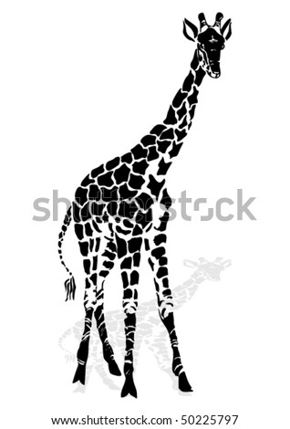 Vector illustration giraffe - stock vector