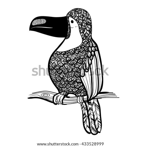Vector illustration. Graphic arts. Tropical toucan bird. Black and white.