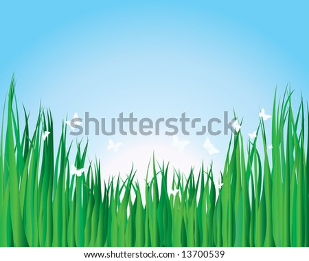Vector illustration grass background for design usage - stock vector
