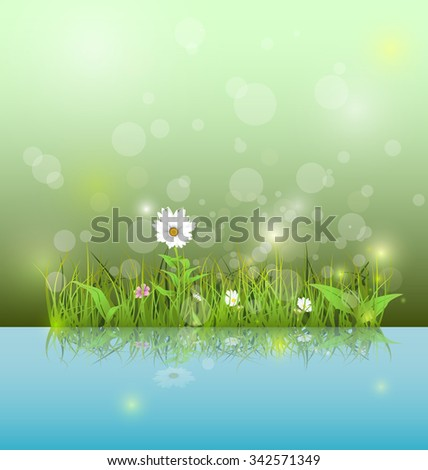 Vector illustration Green grass and leaves with white daisy, wildflower and shadow reflection on light blue water. Soft green color with bokeh background. Spring flower background  - stock vector