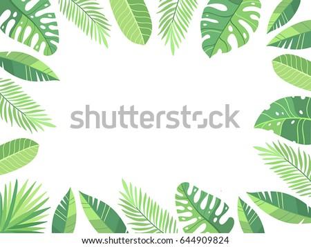 Vector illustration green plants exotic leaves stock vector vector illustration green plants exotic leaves banana leaf areca palm botany stopboris Images
