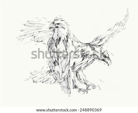 Vector illustration, hand graphics - Eagle - stock vector