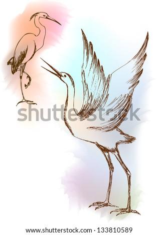 Vector illustration heron - stock vector
