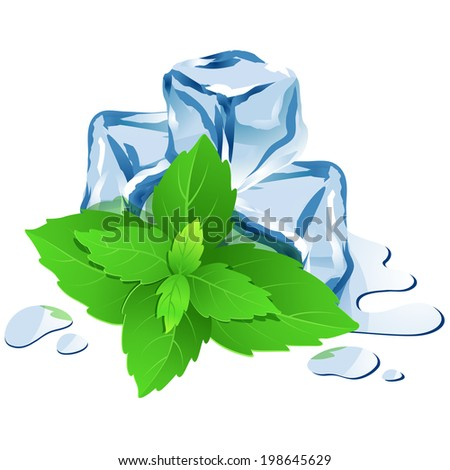 Vector Illustration Icon of Ice cubes with mint isolated on white  - stock vector
