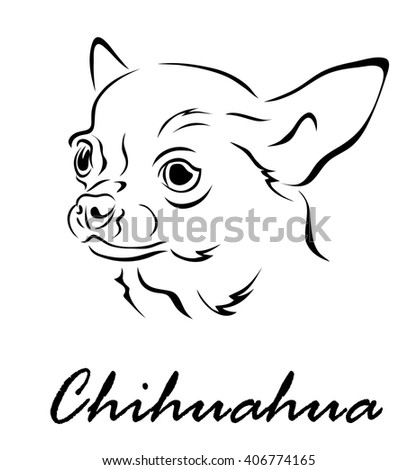 Vector illustration. Illustration shows a dog breed Chihuahua