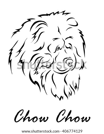 Vector illustration. Illustration shows a dog breed Chow Chow