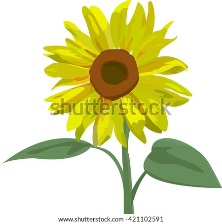 Vector illustration in eps10 format of beautiful yellow sunflower with leaves. Stylized summer yellow flower isolated on white background. Floral design elements. - stock vector