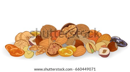 vector illustration nuts and dried fruits on a white background