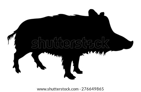 Vector illustration od wild pig silhouette - stock vector