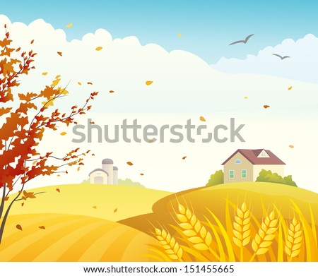 Vector illustration of a beautiful fall farm scene with golden cornfields and red branches - stock vector