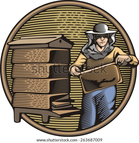 Vector illustration of a beekeeper, collecting honey from a beehive. Organic farming. Retro woodcut style. - stock vector