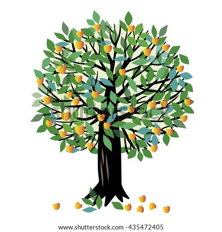 Vector illustration of a fruit tree. Apricot tree